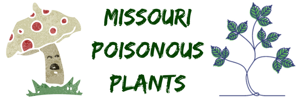 Missouri poisonous plants